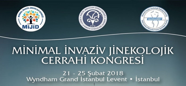 21-25 February 2018 - Minimal Invasive Gynecology Surgery Congress - Istanbul
