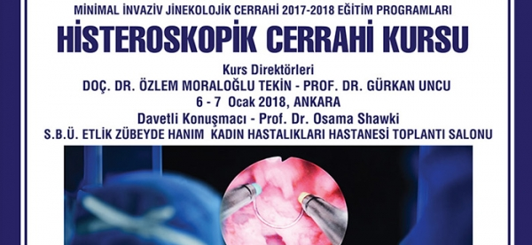 6-7 January 2018 ANKARA: Hysteroscopic Surgery Course